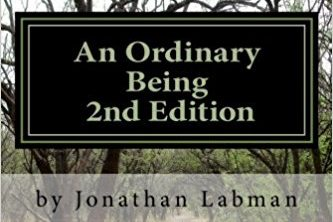 eBook: An Ordinary Being